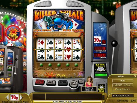 Play Killer Whale Poker - Free Slot Game