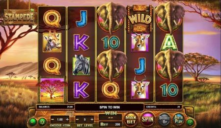 Play Stampede - Free Slot Game
